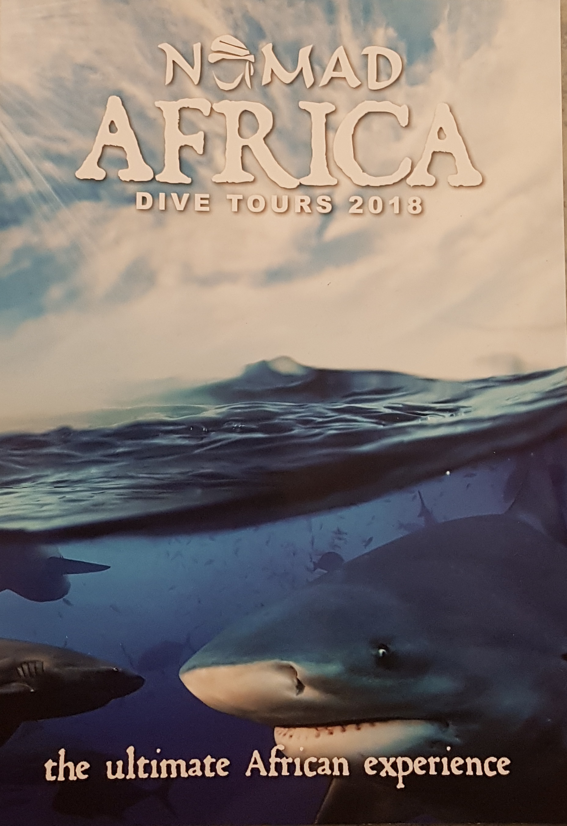 Nomad Africa Dive Tours